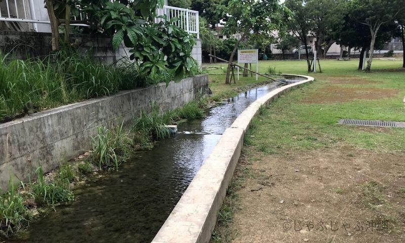 大川児童公園の水路