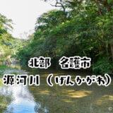 【名護市】源河川(げんかがわ)で水遊びしてきた!行き方や持ち物を解説!冷たい自然の川で遊べる人気スポット